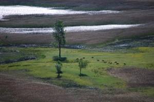 vista sulla riserva.