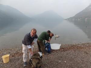 Volontari sul lago del Ceresio